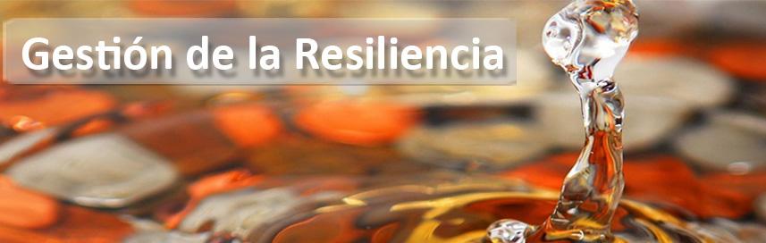 07 Gestión de la Resiliencia grande2