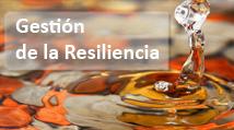 07 Gestión de la Resiliencia pequeño3